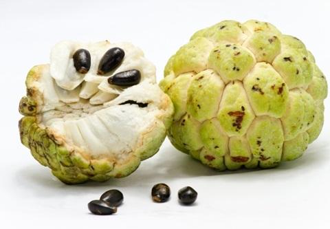 ayurvedic medicines for weight gain
