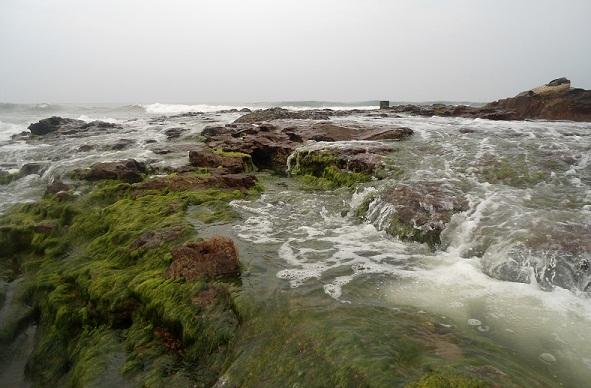 Bheemli Beach Andhra Pradesh