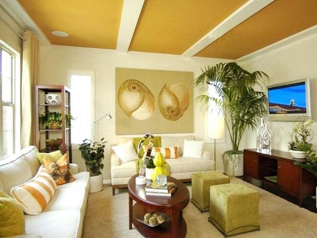 Hall False Ceiling Colour Combinations