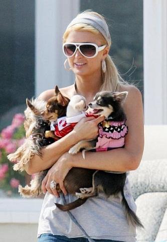 Paris Hilton without makeup7