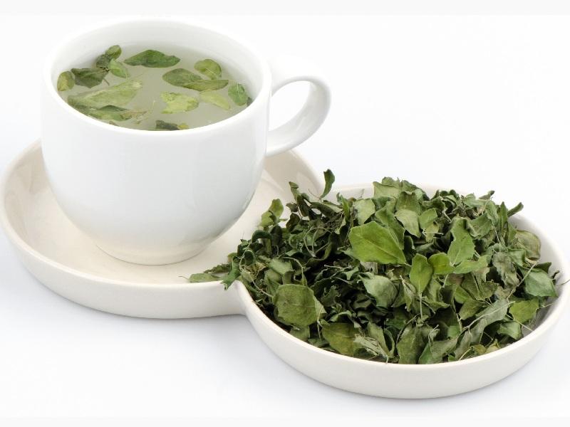 11 Science Proven Moringa Tea Benefits For Skin, Hair & Health