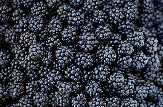 Best Fruits For Diabetics Type 2 Black berry