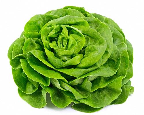 Antioxidant Rich Foods - Lettuce