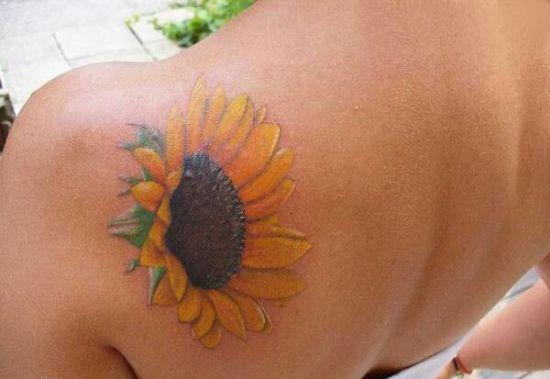 Petite sunflower
