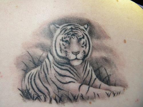 White Tiger Tattoo