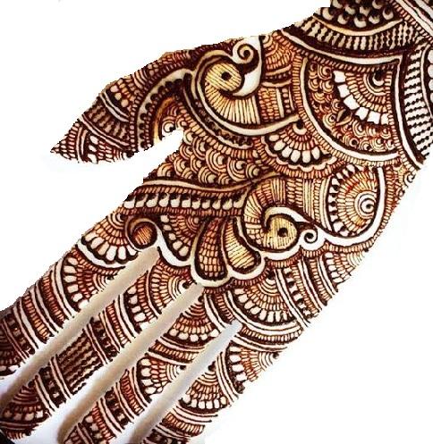 Peacock Motif Designs