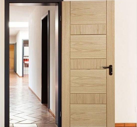 Flush Door Designs With Mica