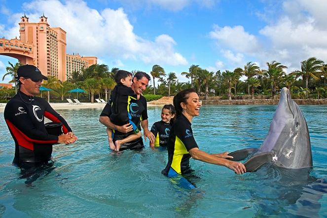 Dolphin-Bay_dubai-tourist-places