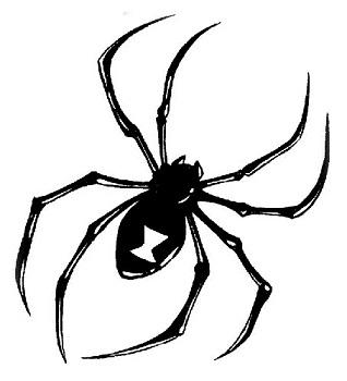 spider tattoo designs
