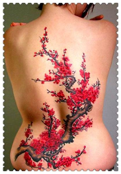 A Japanese cherry blossom tree