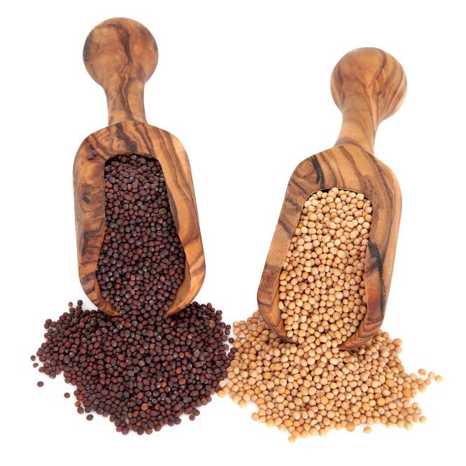 17 Best Benefits Of Mustard Seeds (Rai) For Skin, Hair & Health