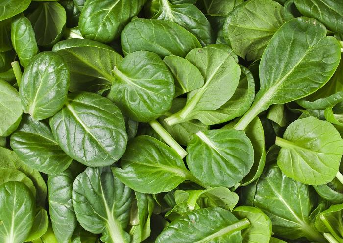 vegetables high in calcium
