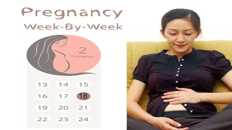 eighteen weeks pregnant