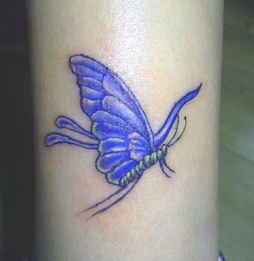 Cartoon Butterfly Tattoos