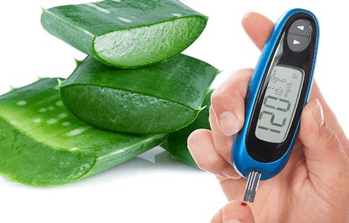 Aloe Vera Reduce Diabetes