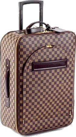 Designer Luggage Bag -1