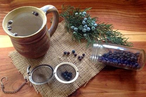 Juniper Berry Tea