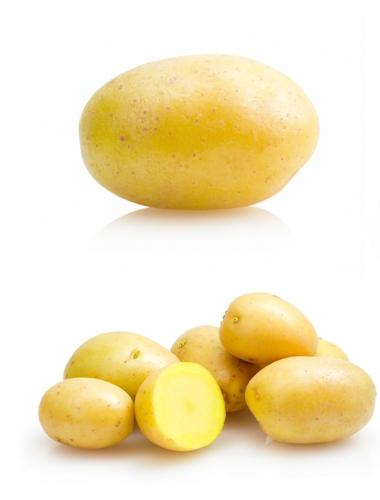 potatto uses