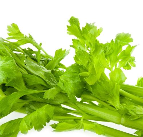 celery leafs