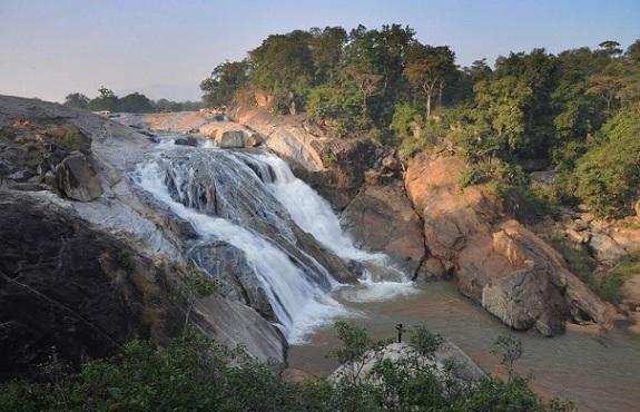 6 Best Sanctuaries and Parks in Bihar