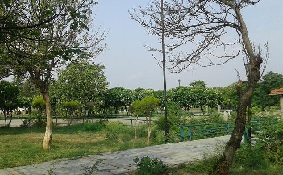 parks-in-lucknow-jyotiba-phule-zonal-park