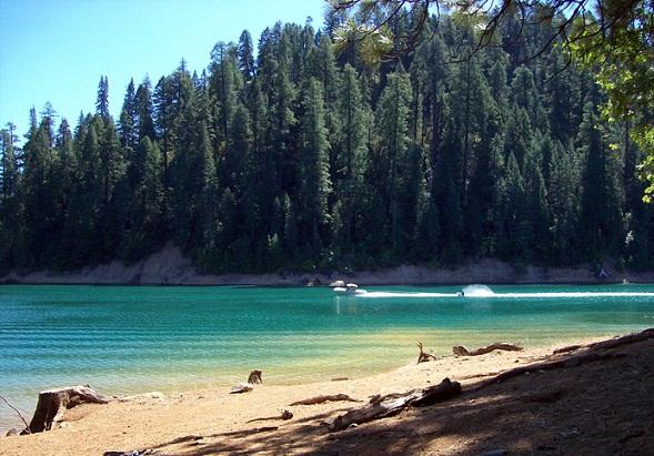 Trinity National Forest, California