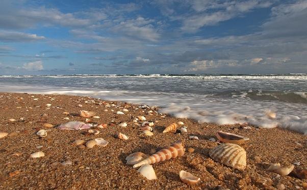 beaches-in-odisha_balighai-beach