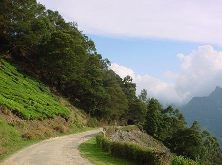 Honeymoon places in Assam9