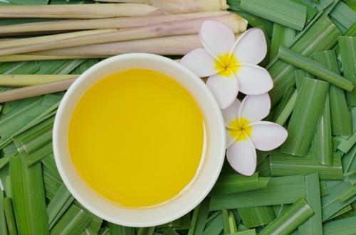 citronella-oil-benefits