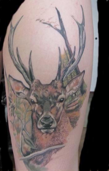 Deer Tattoo 7
