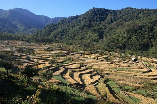 Honeymoon Places in Nagaland-Khonoma Green Village