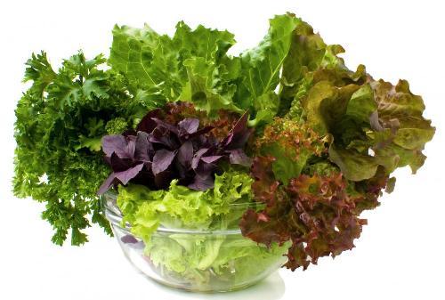 Negative Calorie Foods 3