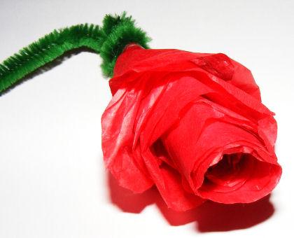 Tissue paper Rose Craft