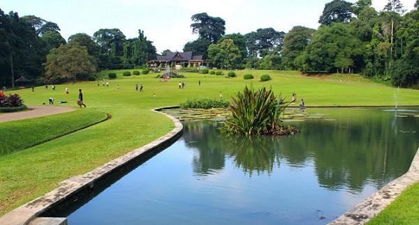 bogor-botanical-gardens_indonesia-tourist-places
