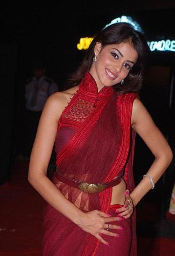 Designer saree blouse patterns (edited)3