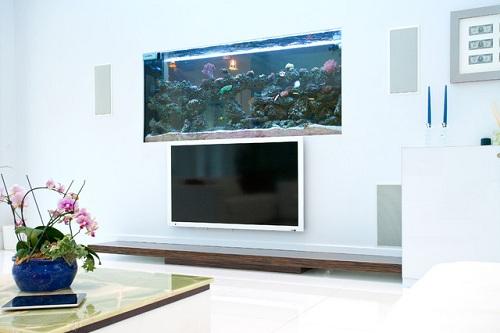 TV Unit with Aquarium