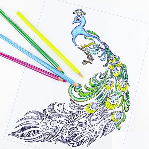 Peculiar Peacock Coloring Sheet