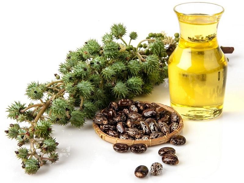 castor oil benefits
