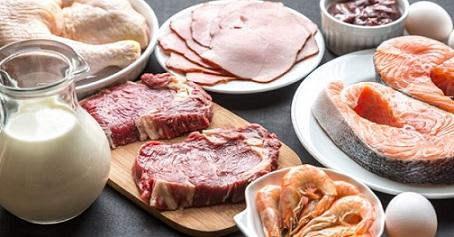 fatty liver diet menu high protein food