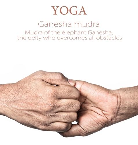 Ganesha mudra 7456