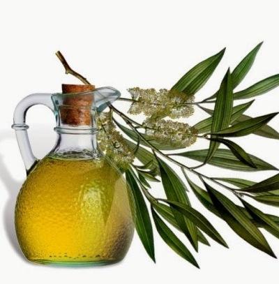 Tea Tree Oil for Hair Growth