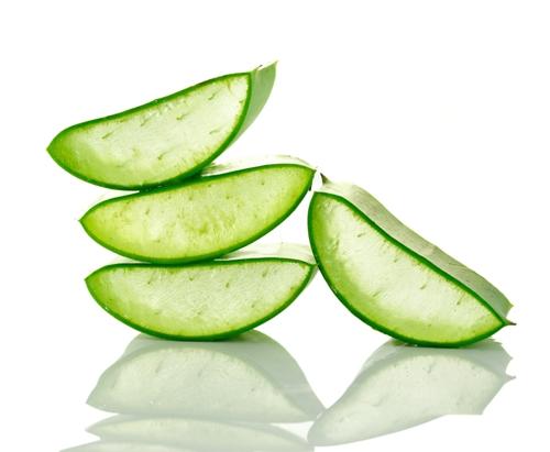 Aloevera gel leaf