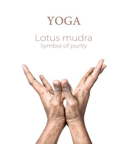 Lotus mudra 7456