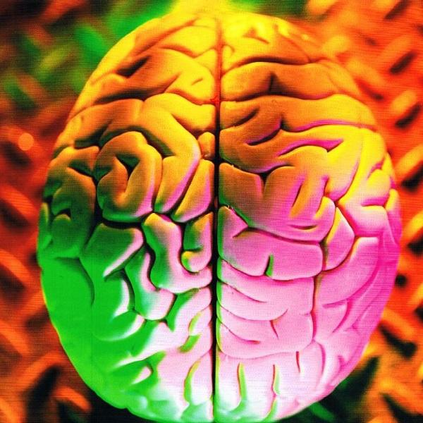 How to Do Super Brain Yoga Asanas and Benefits
