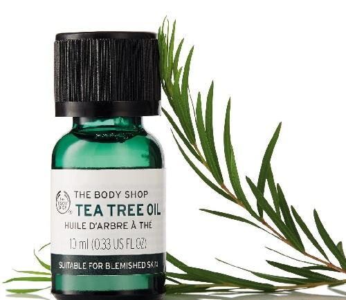 Tea Tree Oil to Treat Hormonal Acne