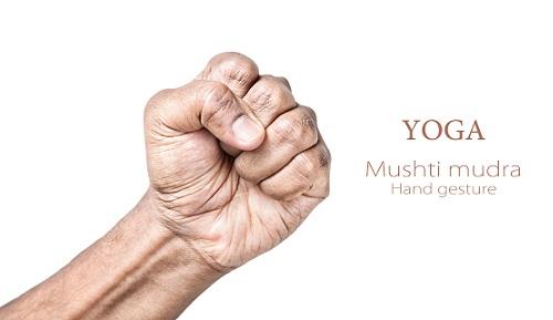 Mushti Mudra