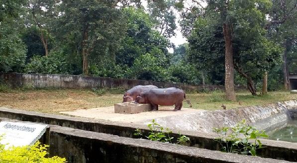 parks-in-tripura-sipahijola-wildlife-sanctuary