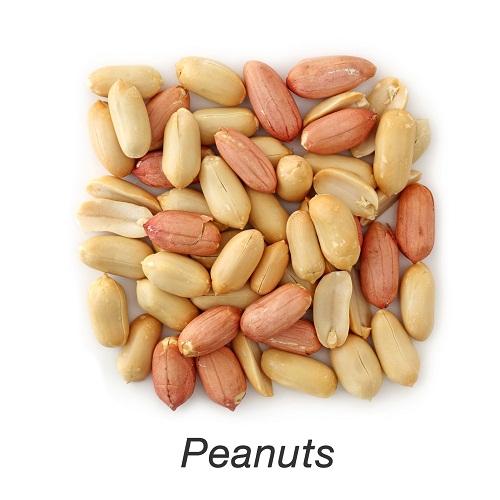 peanuts in pregnancy