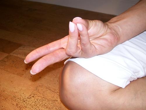 pran-mudra Yoga 1