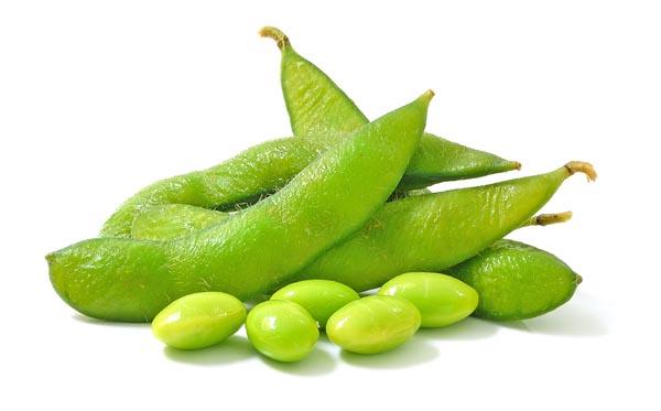 Beans to Grow Taller